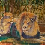 Annie King Lions