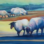 Annie King Sheep